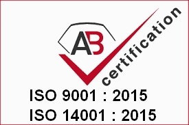ISO 9001 14001 Project services